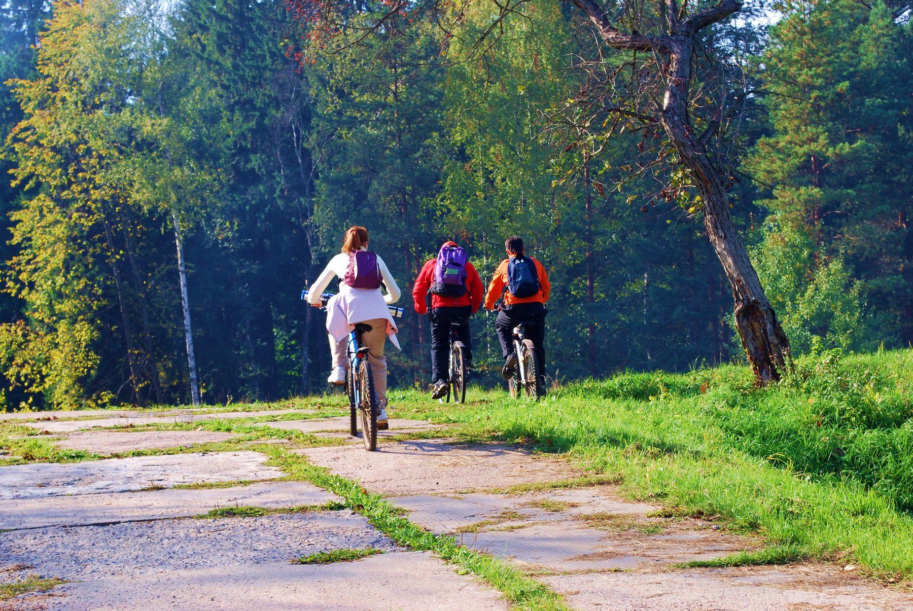 Vezna ruta Križevci – Vrbovec
